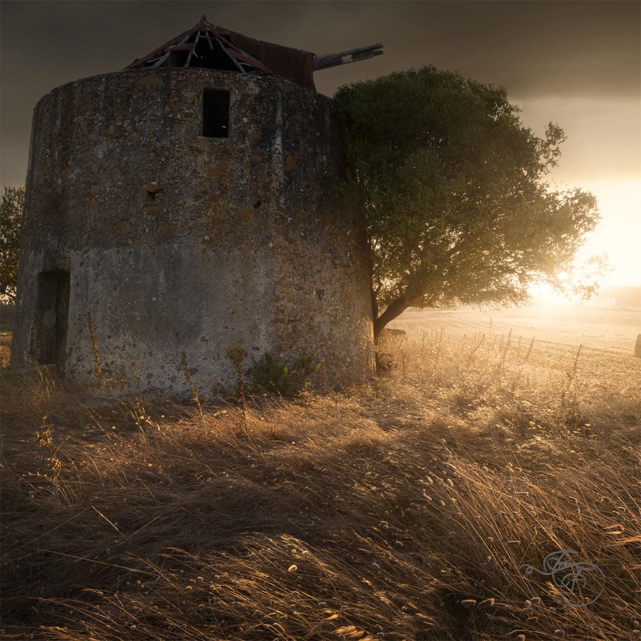 enrico-fossati-photography-nature