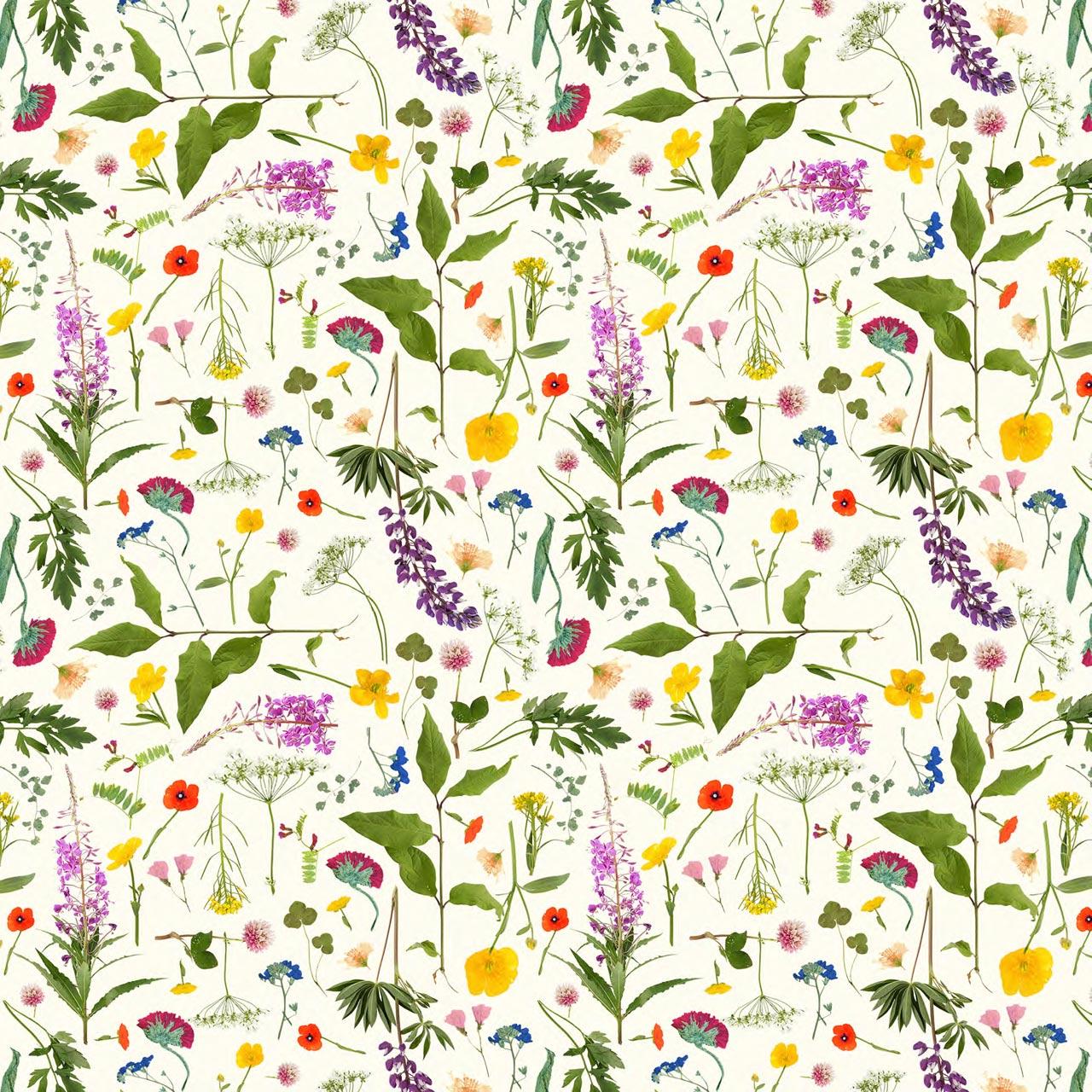 ivana helsinki nordic wildflowers collection