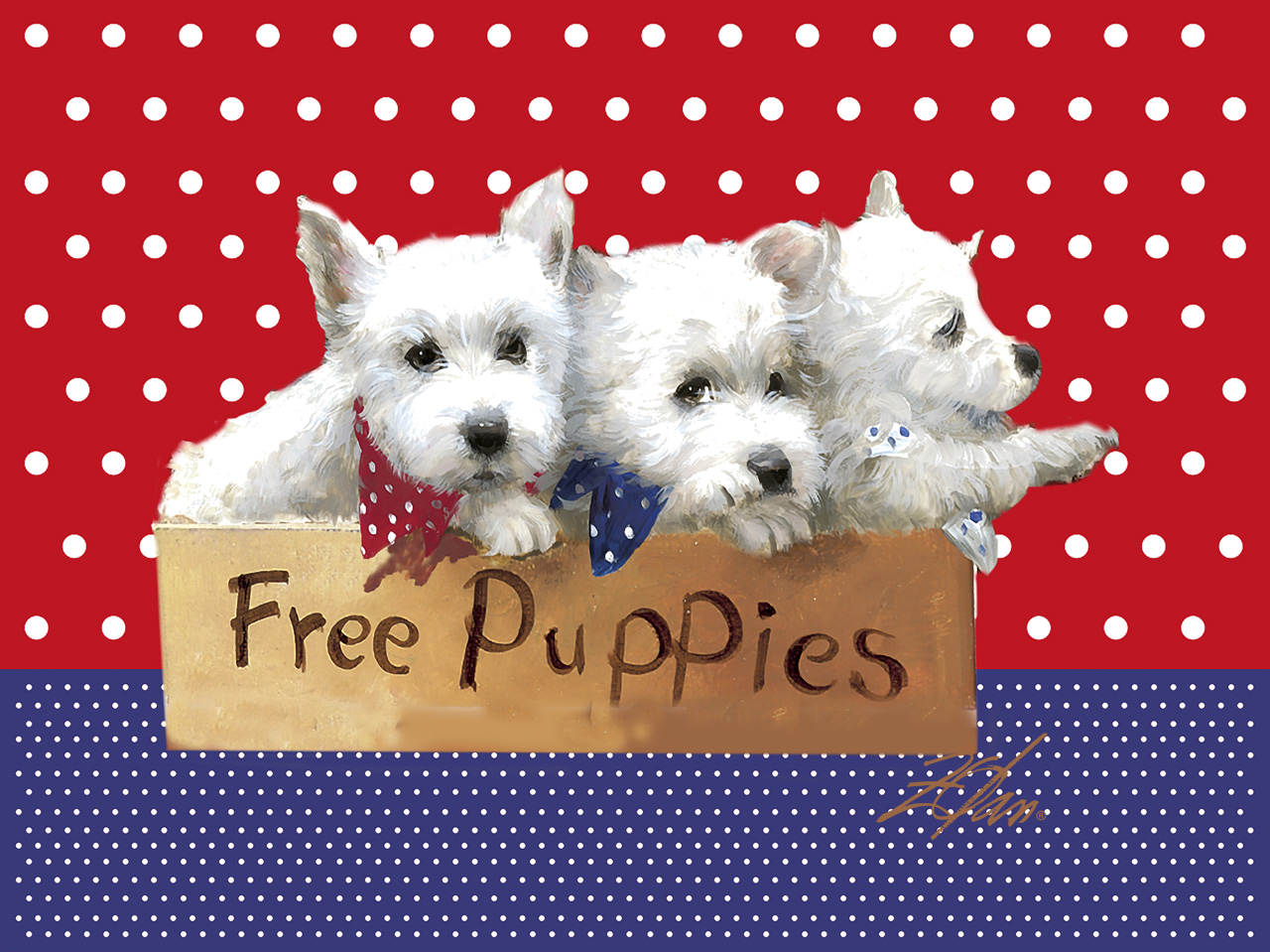 zolan free puppies