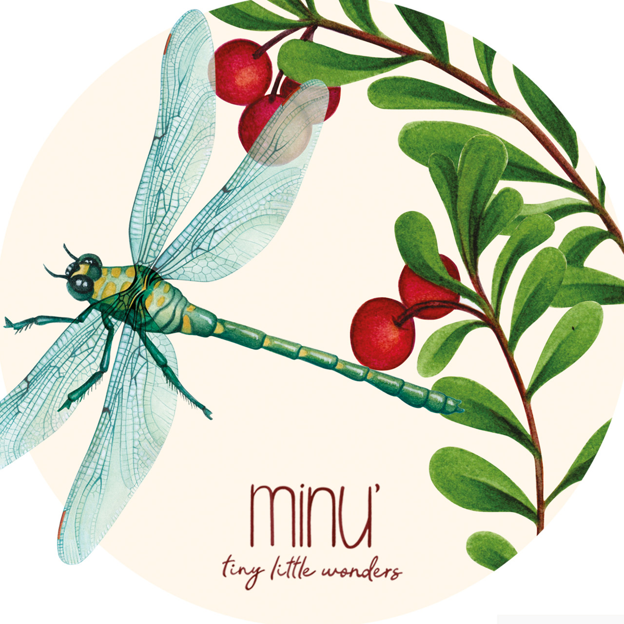 Yu.me minu collection dragonfly