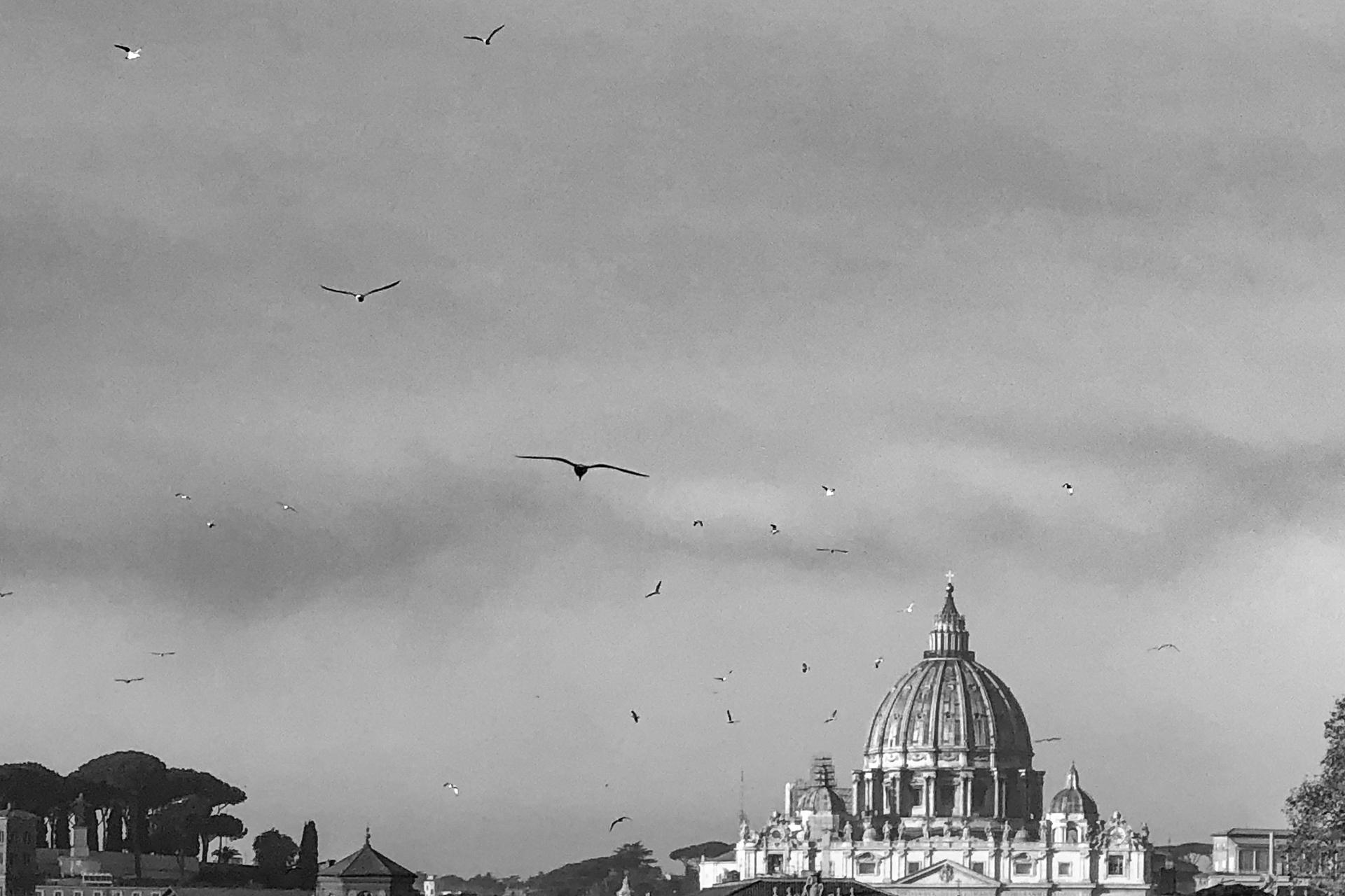 mainerorocca vatican black/white photography