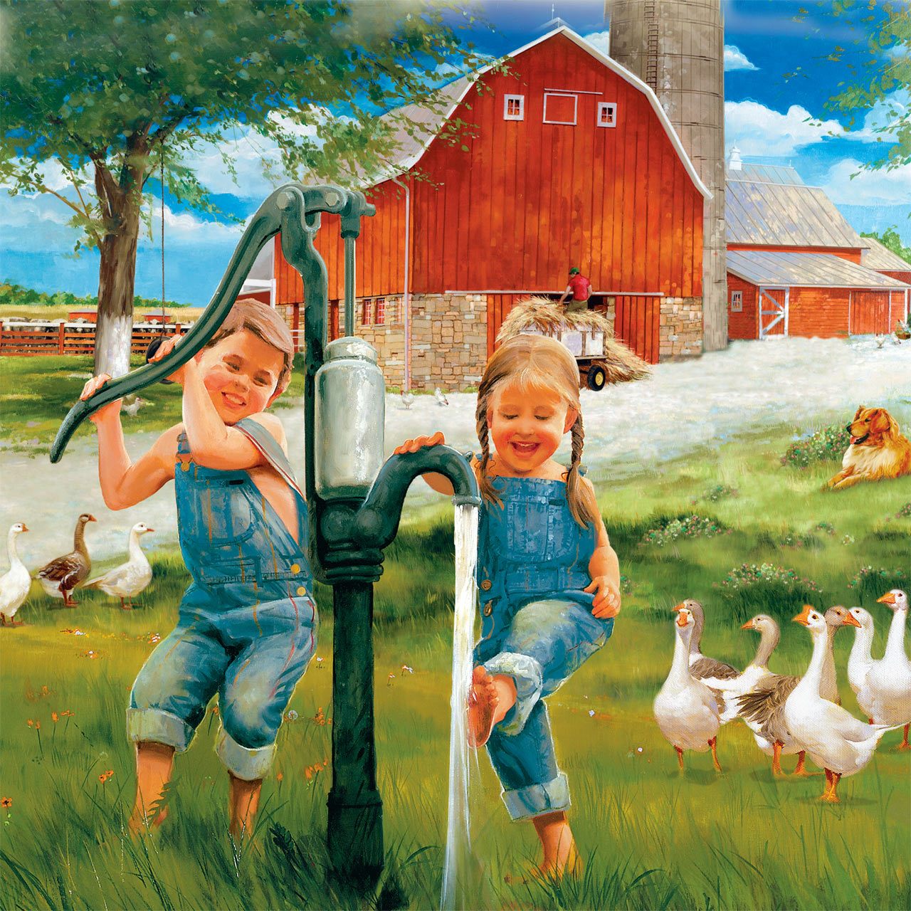 donald zolan country kids